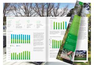 Click to view annual report demo